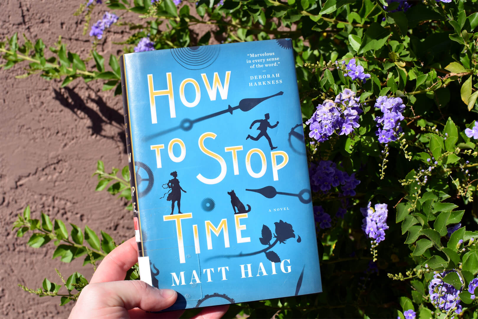 How To Stop Time Book Club Questions - Book Club Chat