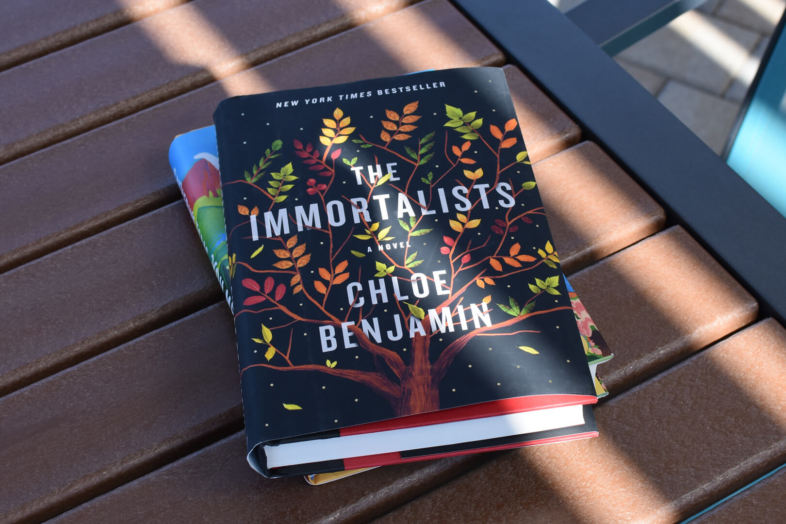 The Immortalists Preview - Book Club Chat