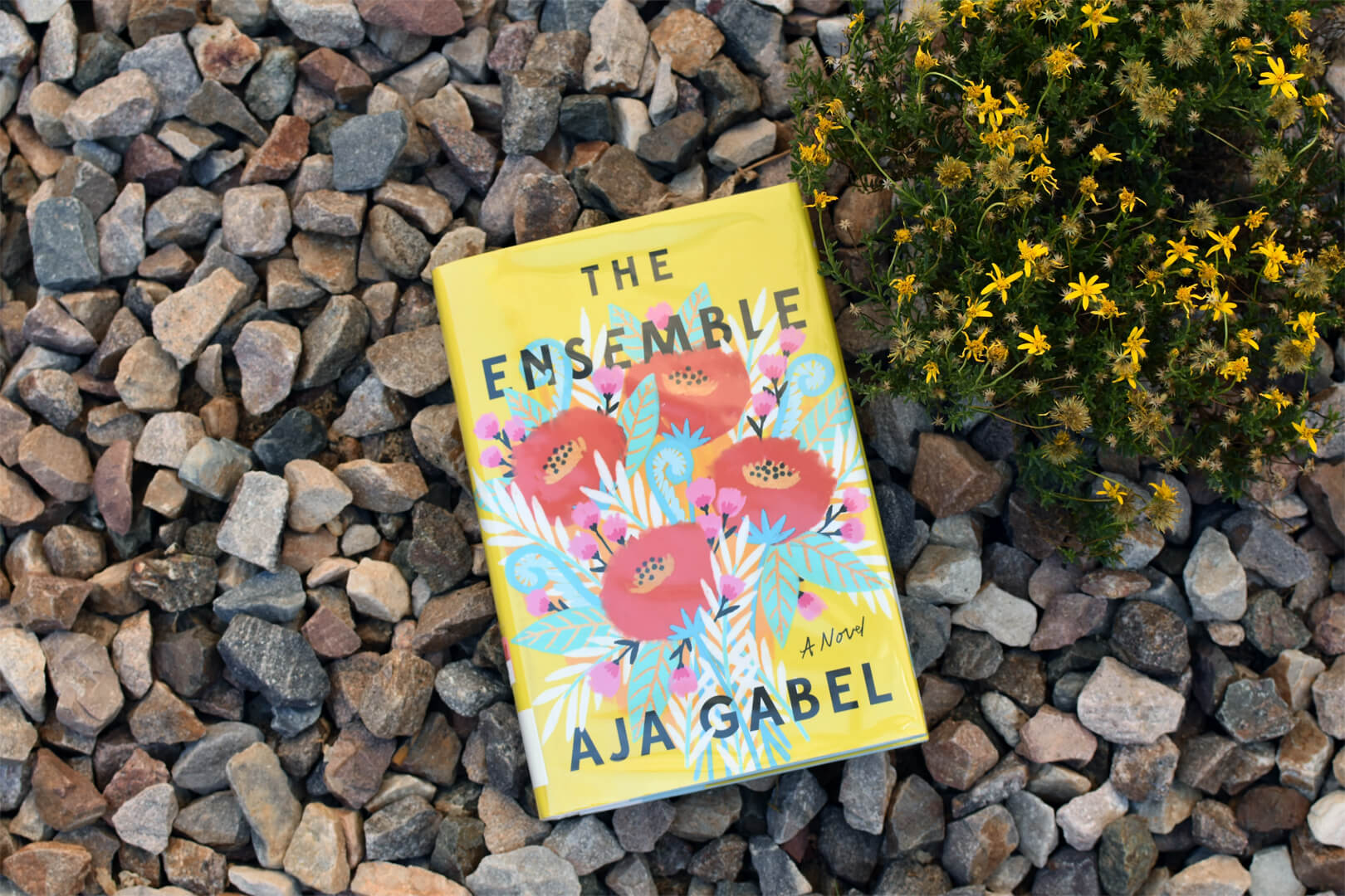 The Ensemble Book Club Questions - Book Club Chat