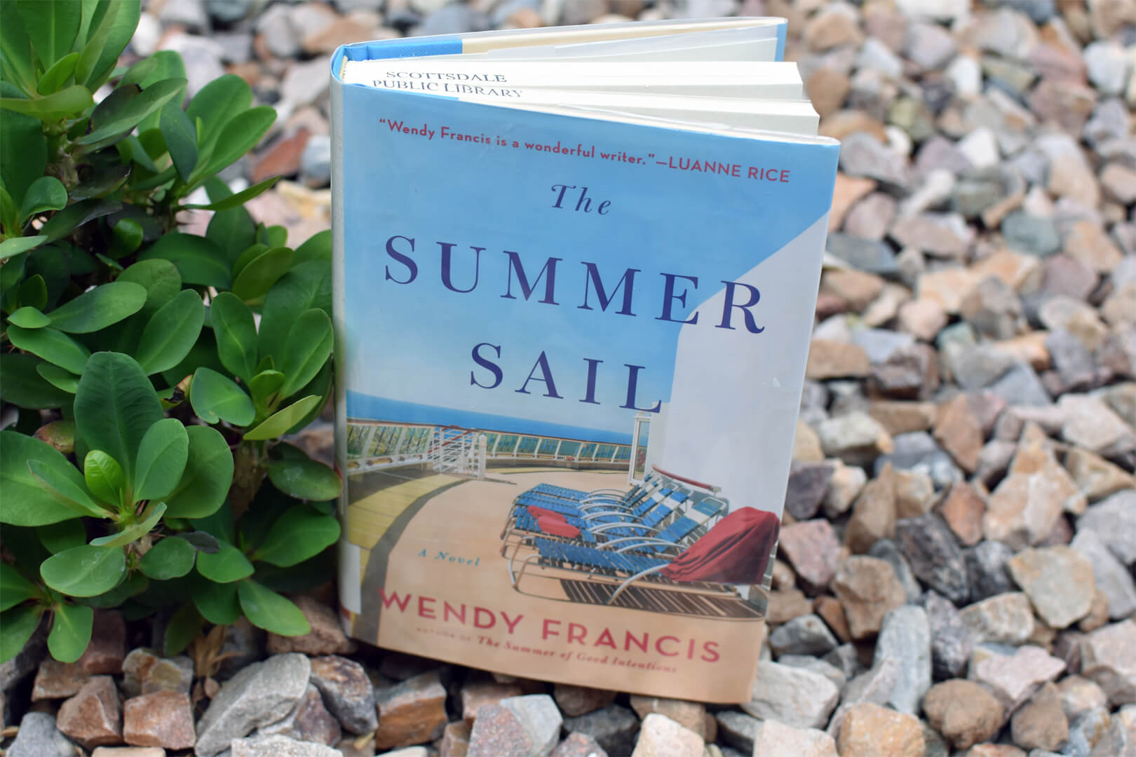 The Summer Sail Preview - Book Club Chat