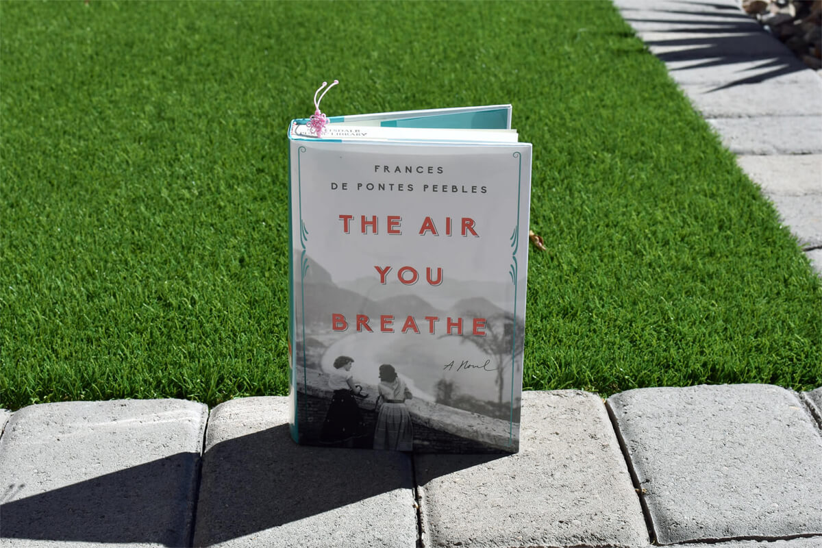The Air You Breathe Book Club Questions-Book Club Chat