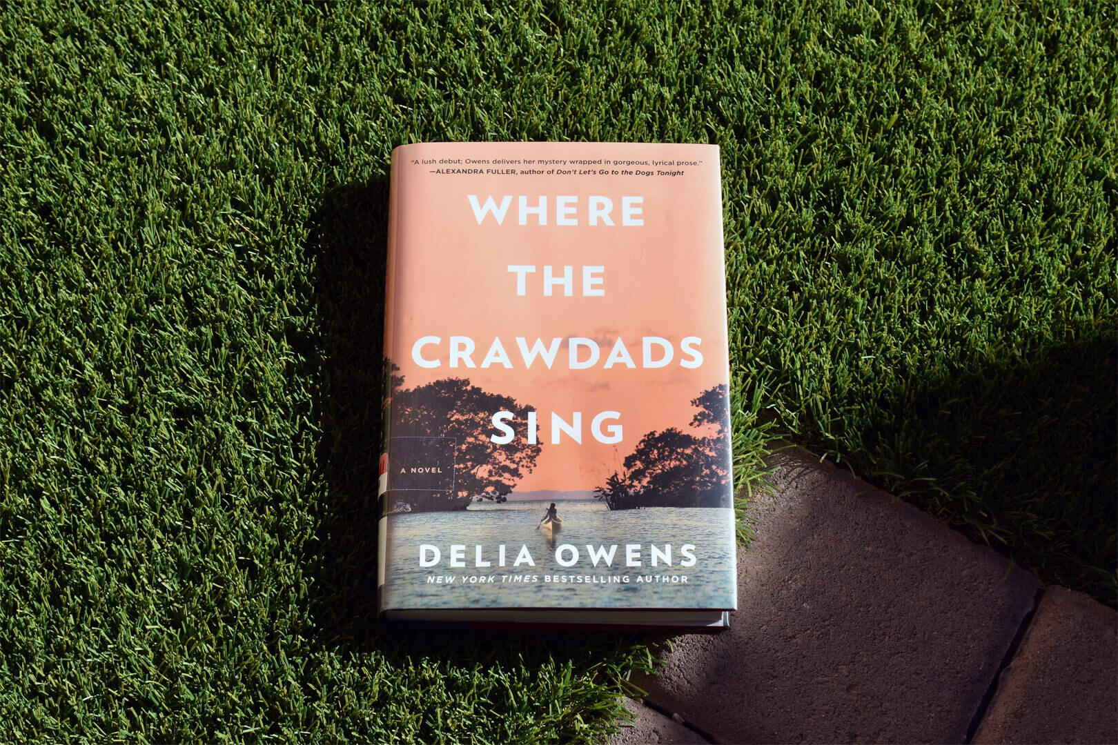 Where The Crawdads Sing Preview - Book Club Chat