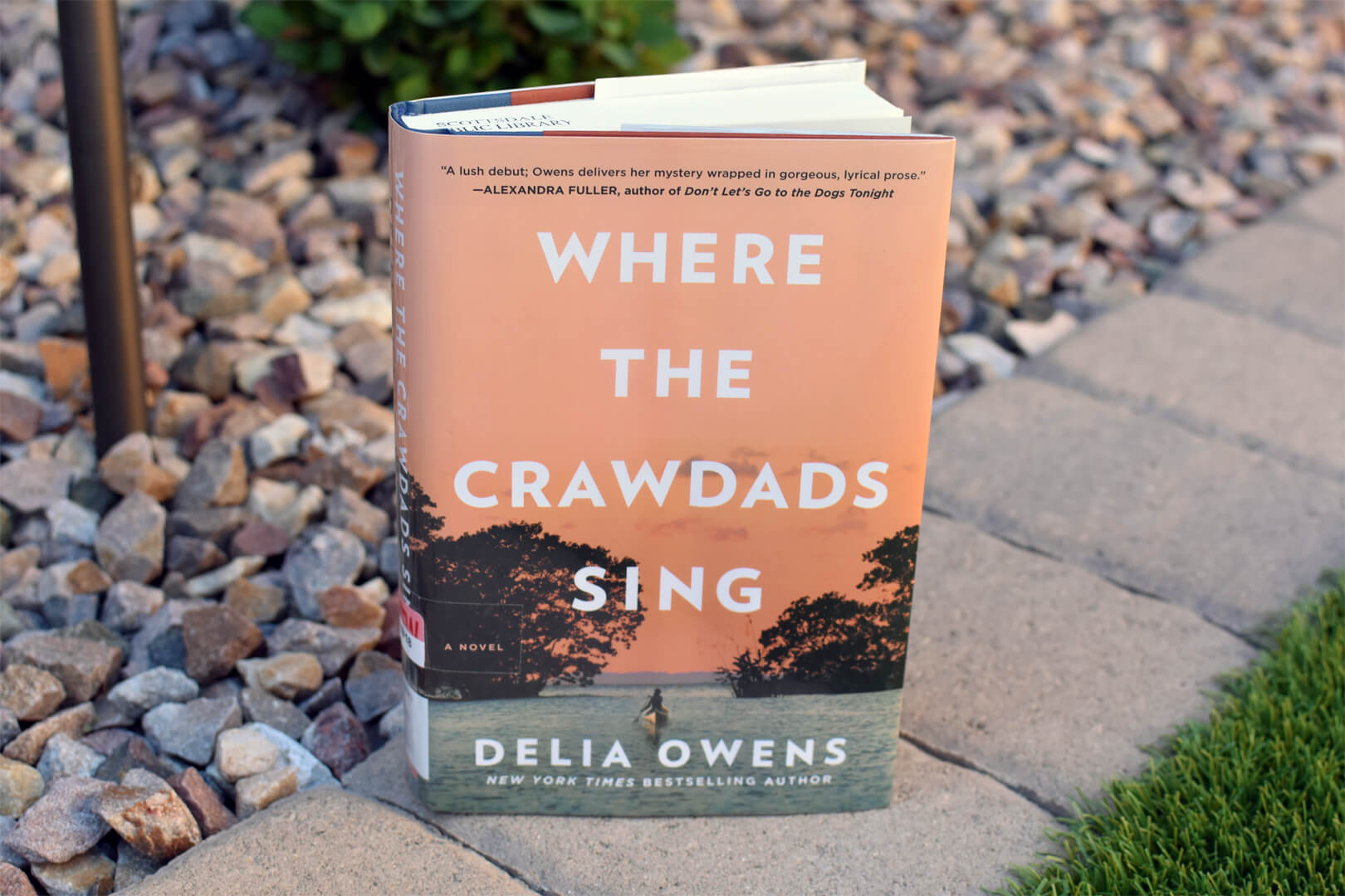 Review: Where the Crawdads Sing by Delia Owens - Book Club Chat - Mother's Day Themed Books