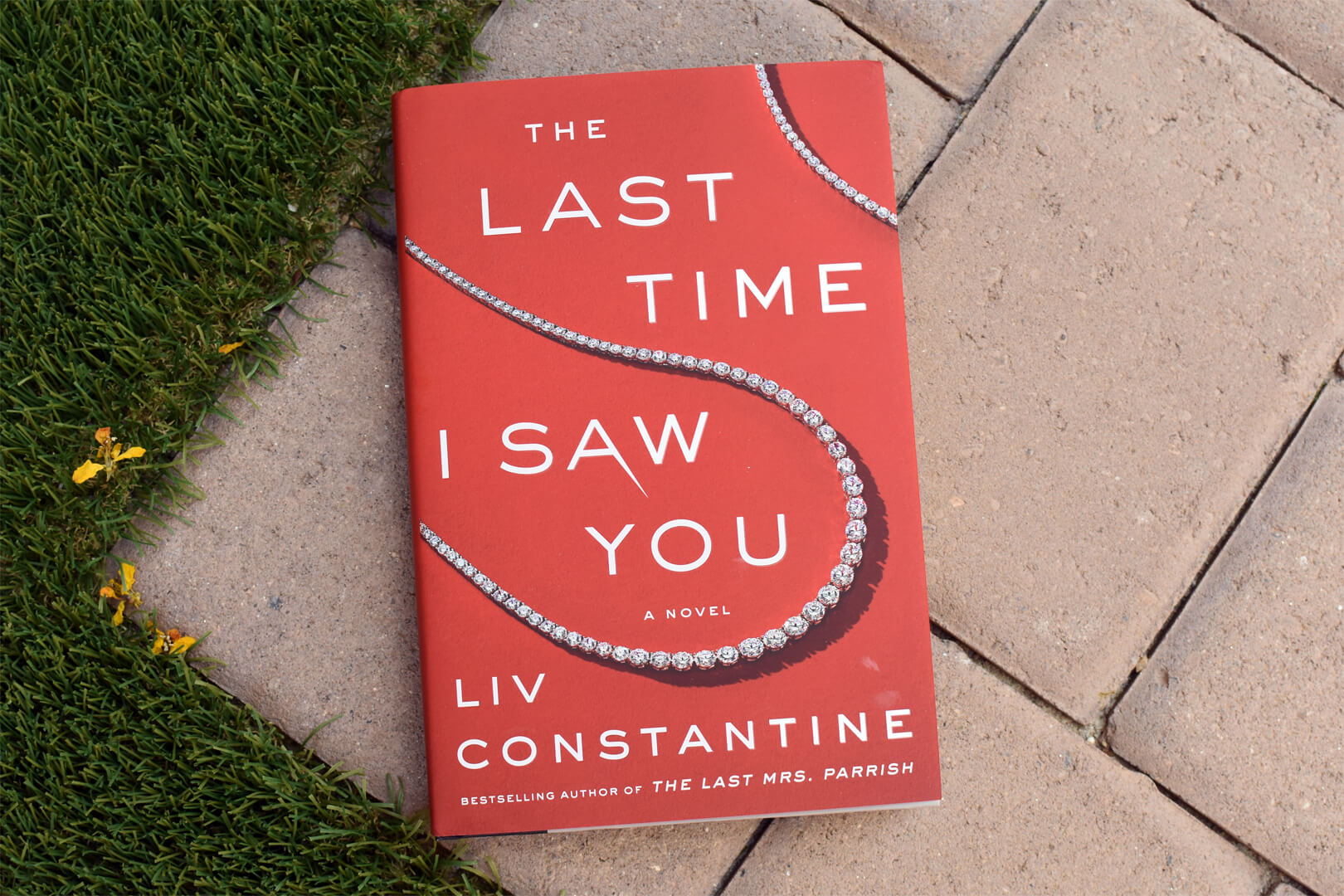 The Last Time I Saw You Book Club Questions