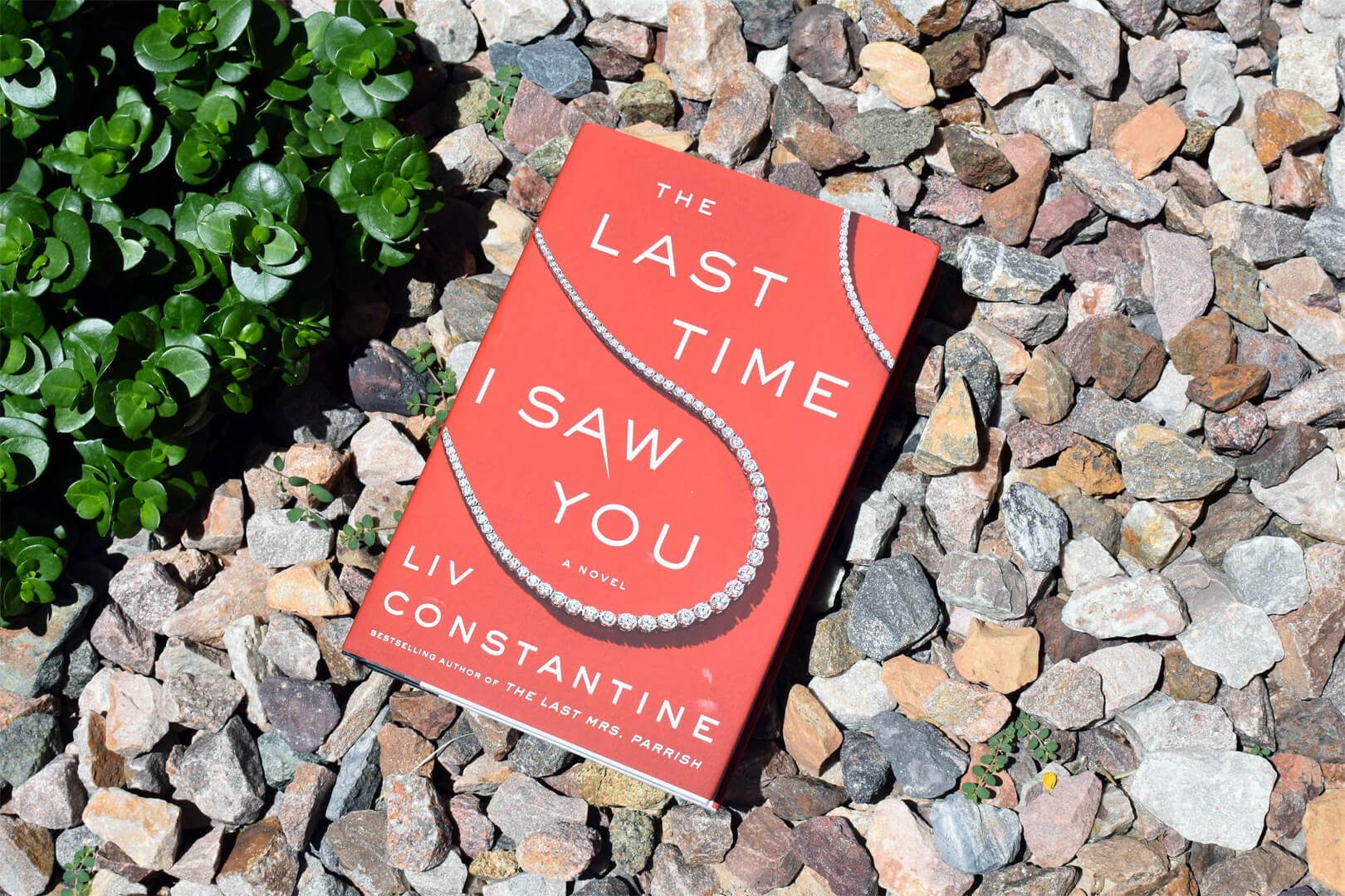 The Last Time I Saw You Review - Book Club Chat