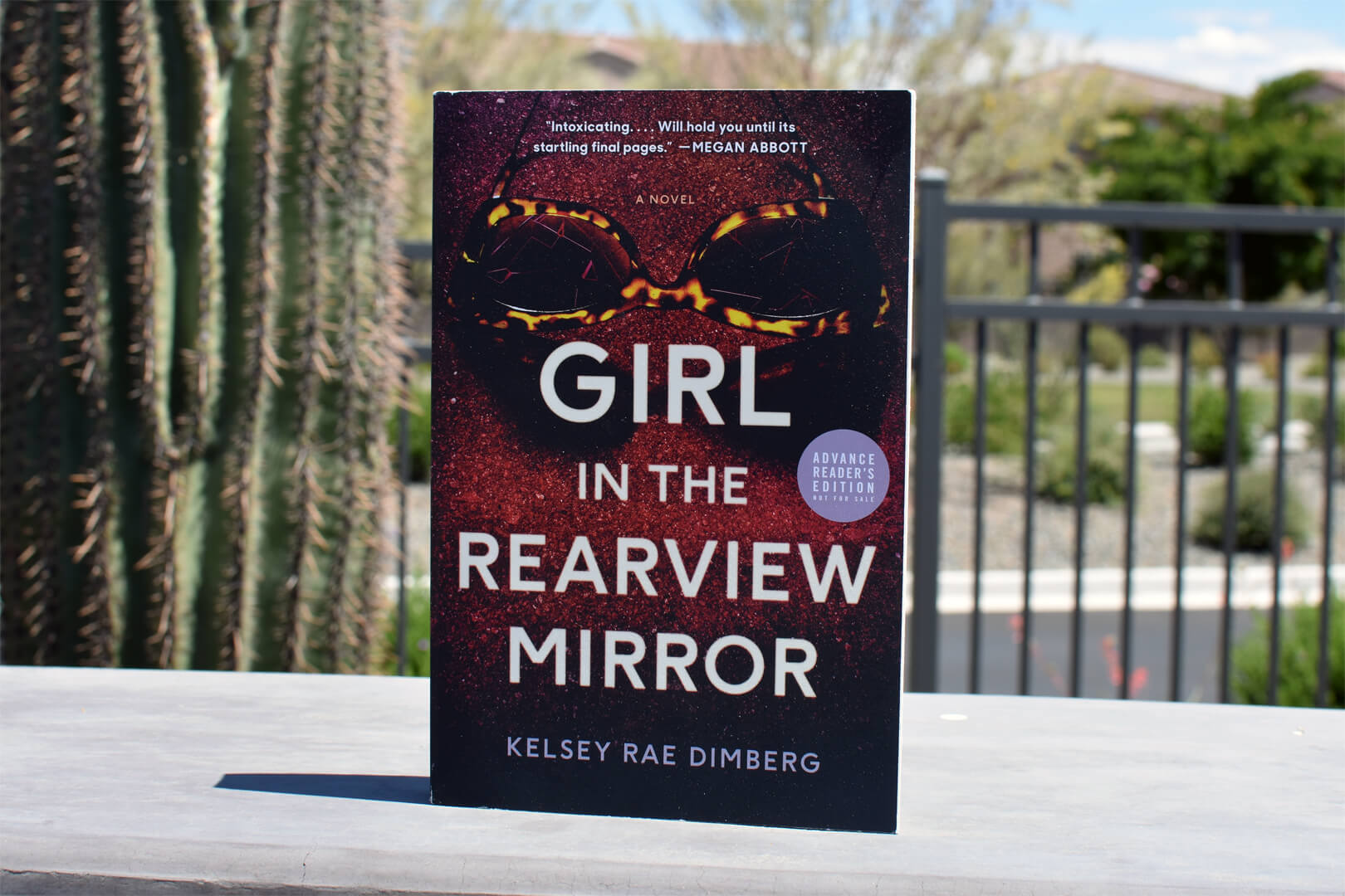 Girl In The Rearview Mirror Review