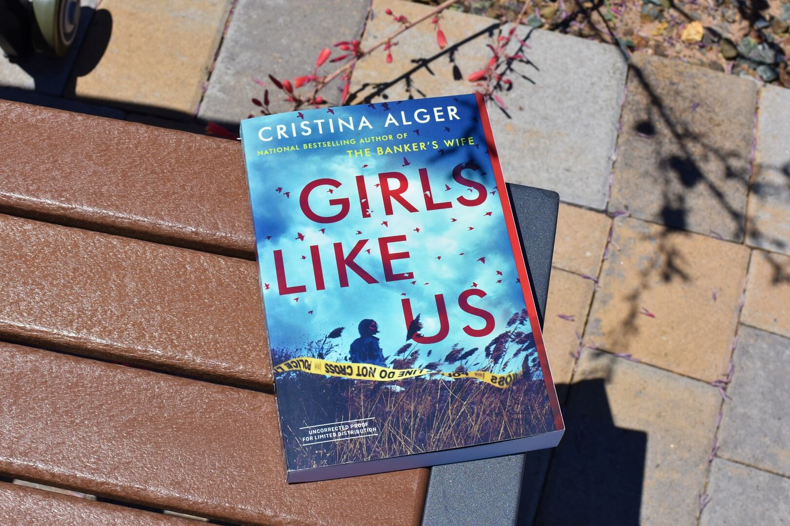 Girls Like Us book review - book cover