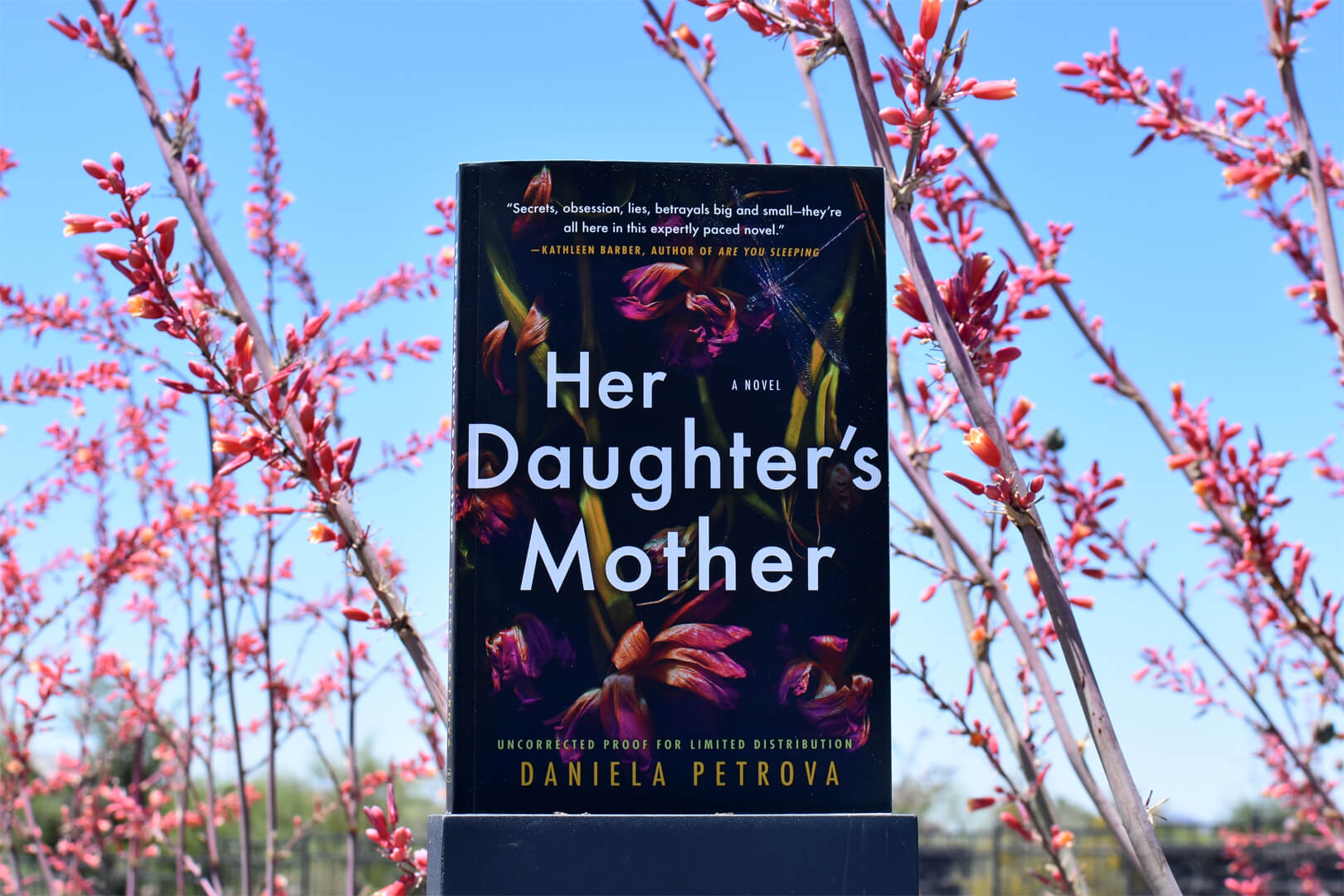 Her Daughter's Mother Review