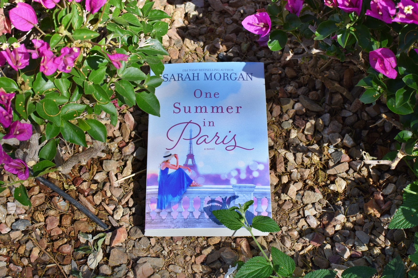 One Summer in Paris Book Cover - Review - Book Club Chat