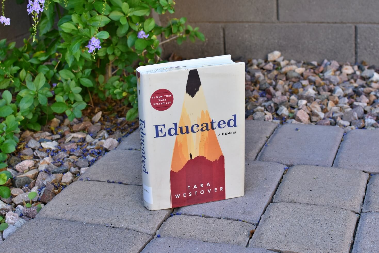 Educated Book Club Questions - Book Club Chat