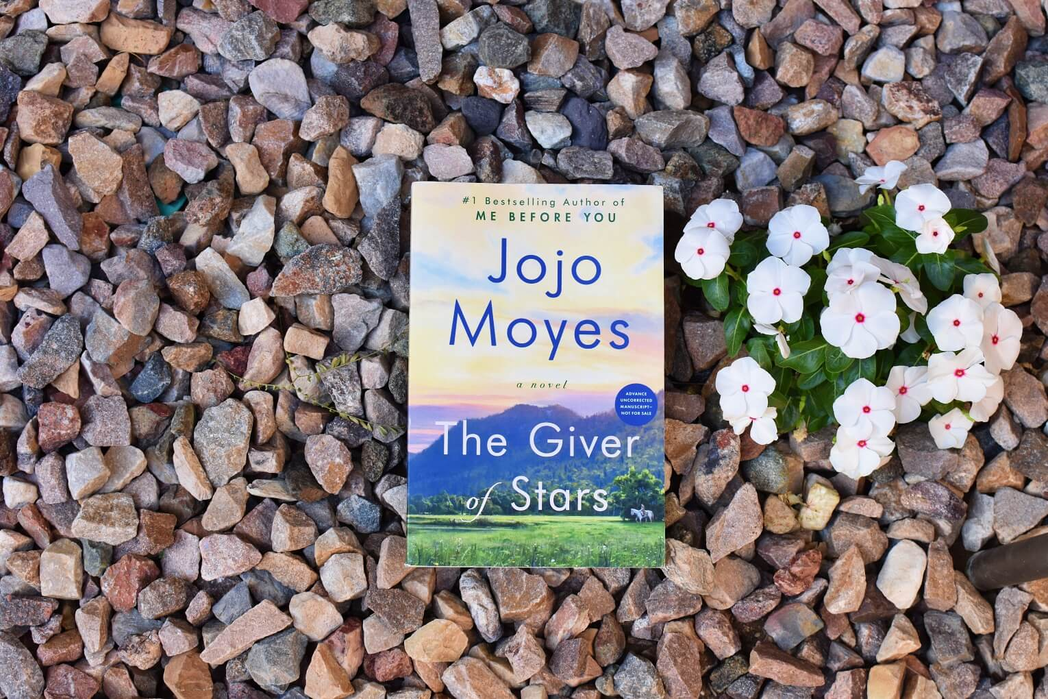 The Giver of Stars Review Jojo Moyes - Book Club Chat