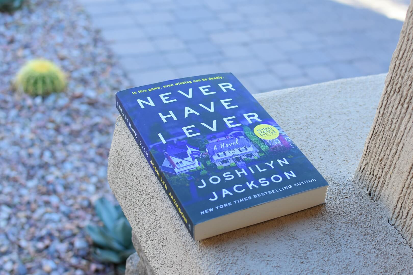 Never Have I Ever Book Club Questions - Book Club Chat