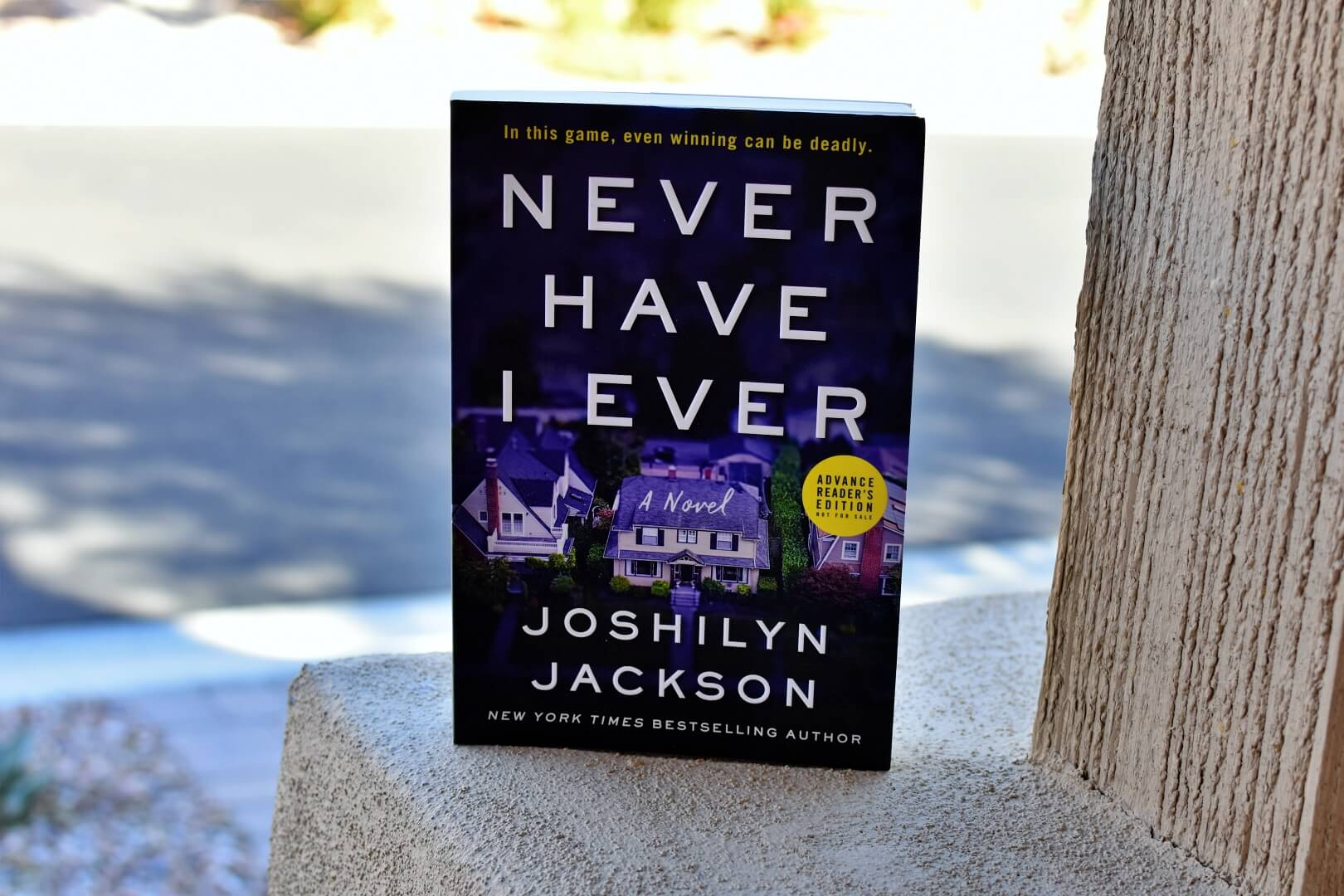 Never Have I Ever Review - Book Club Chat