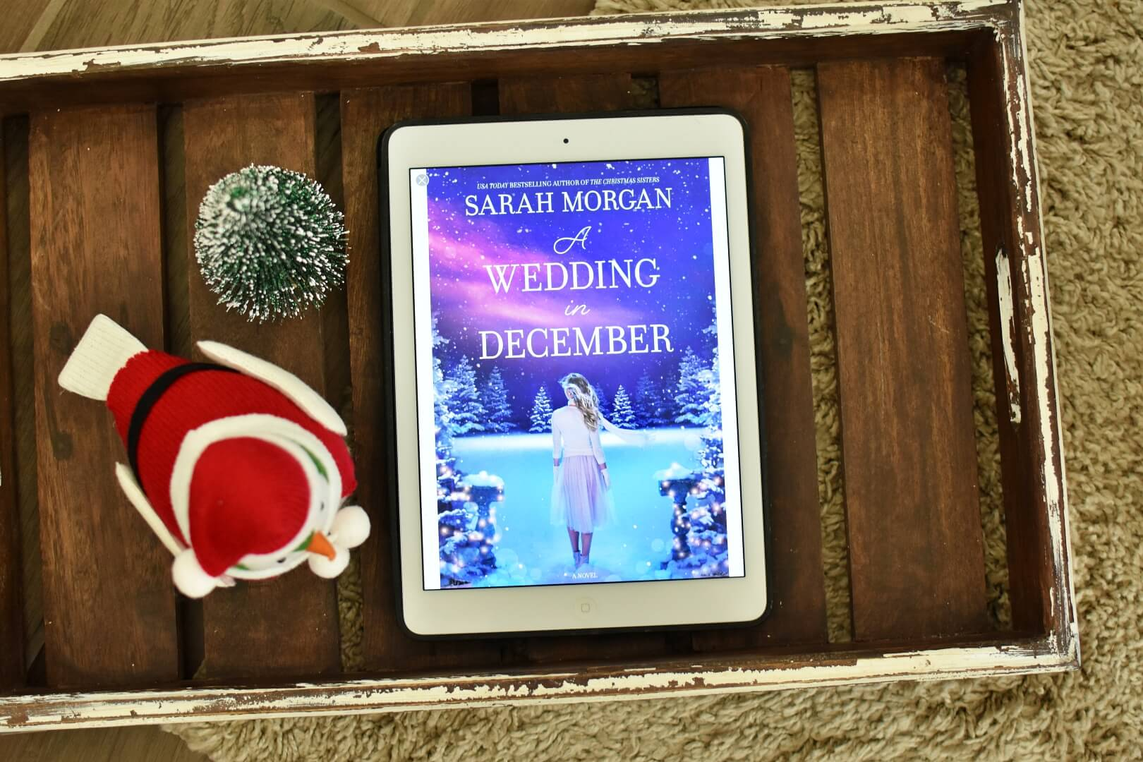 A Wedding in December Book Club Questions - Book Club Chat