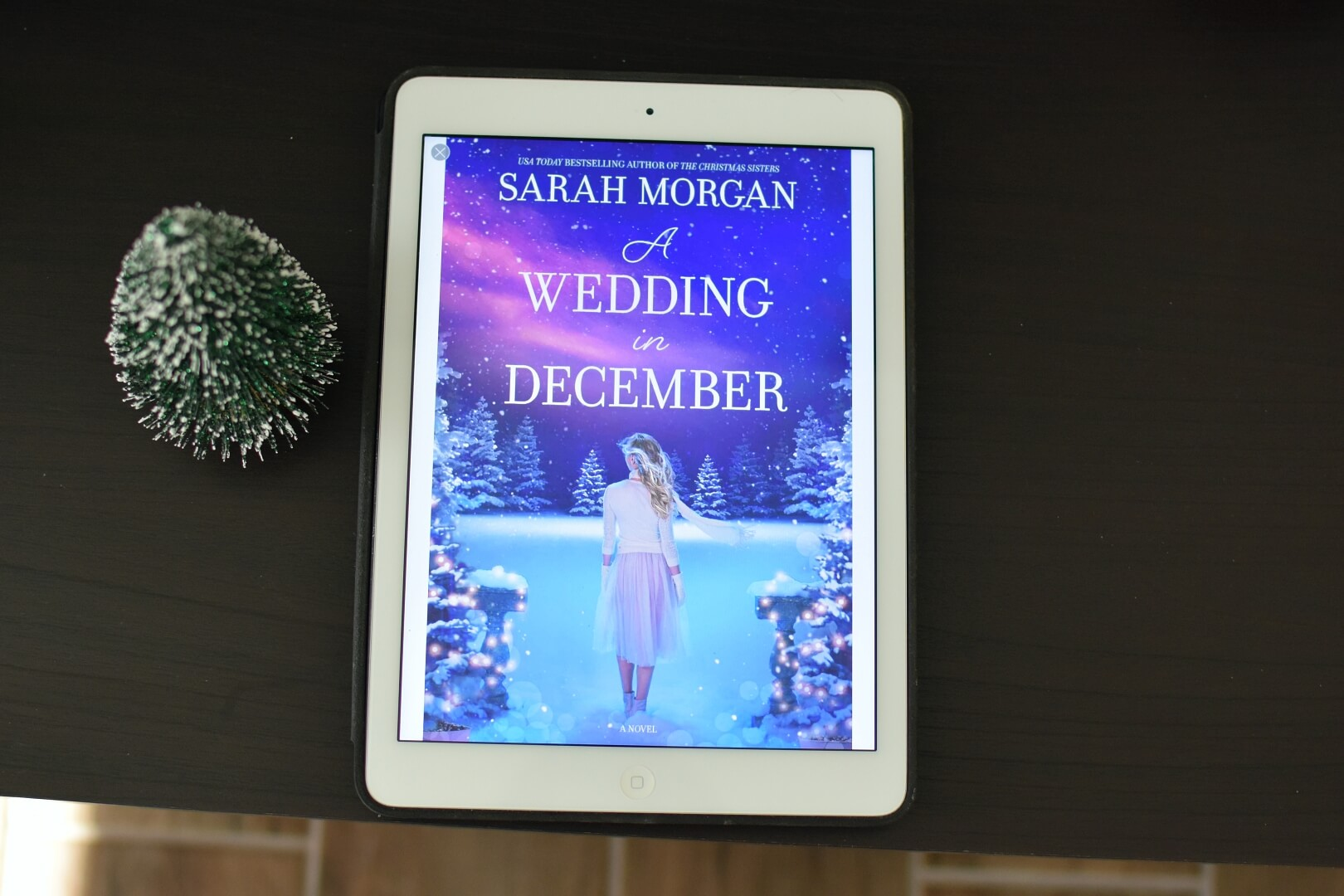 A Wedding in December Review - Book Club Chat