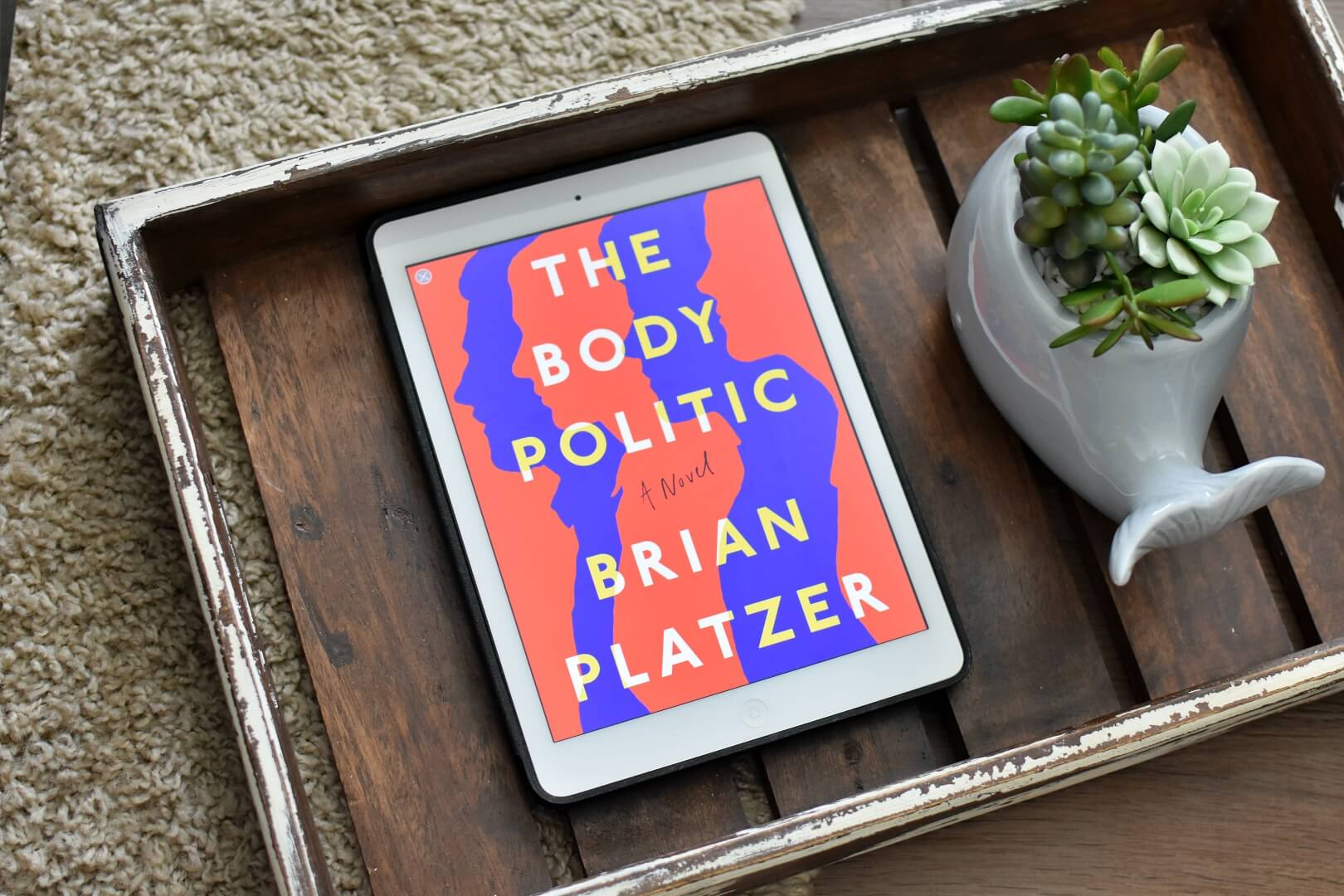 book club questions the body politic - book club chat