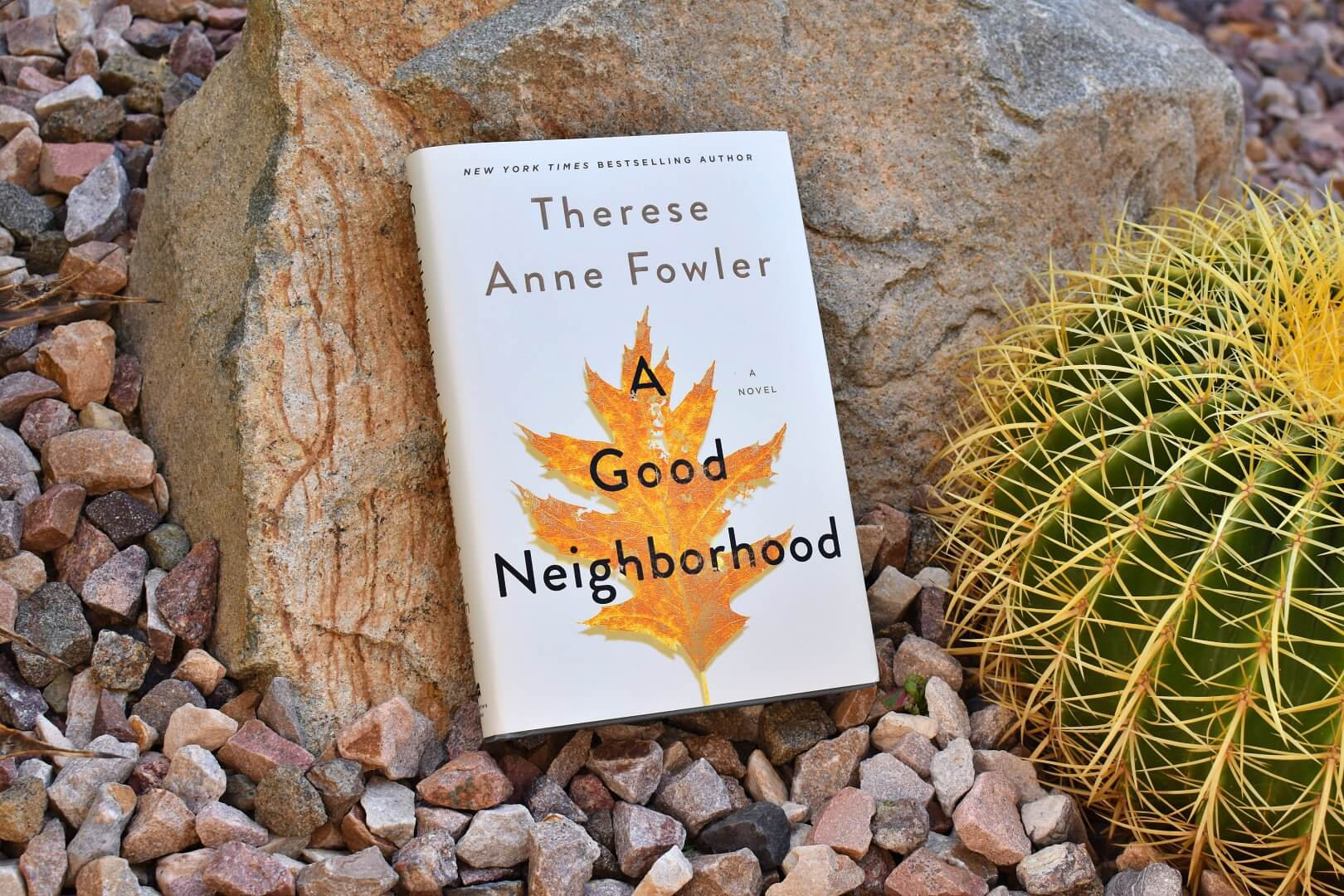 review a good neighorhood - book club chat