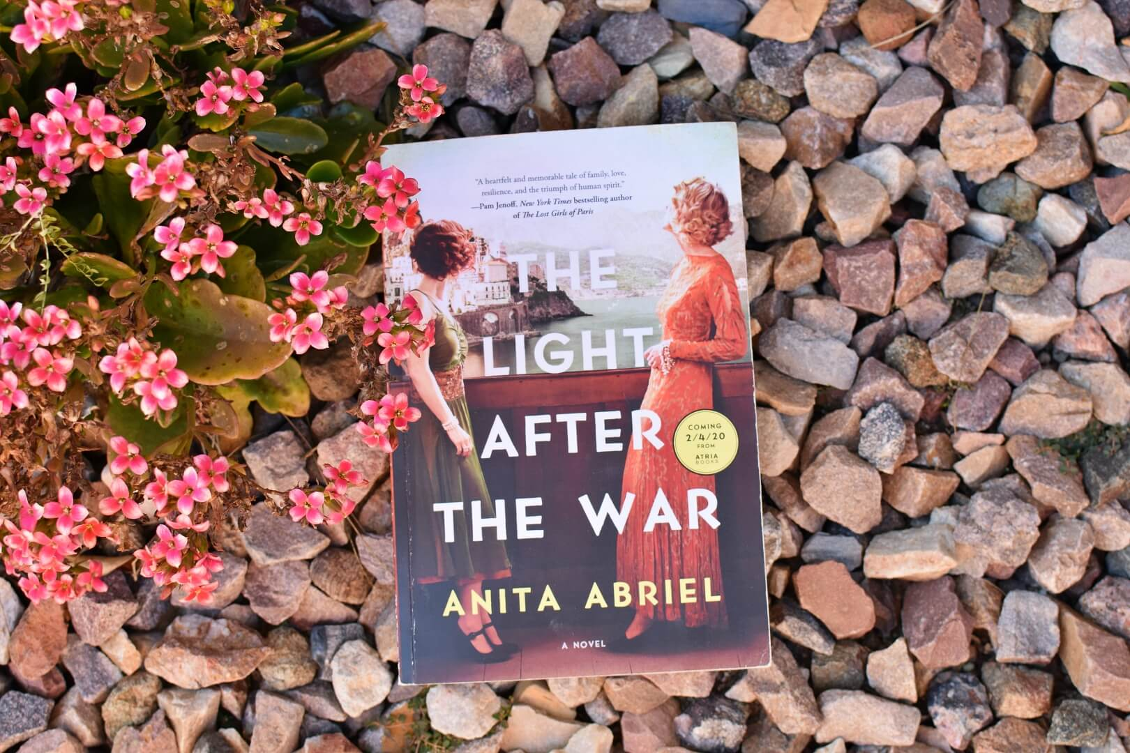 the light after war review - book club chat
