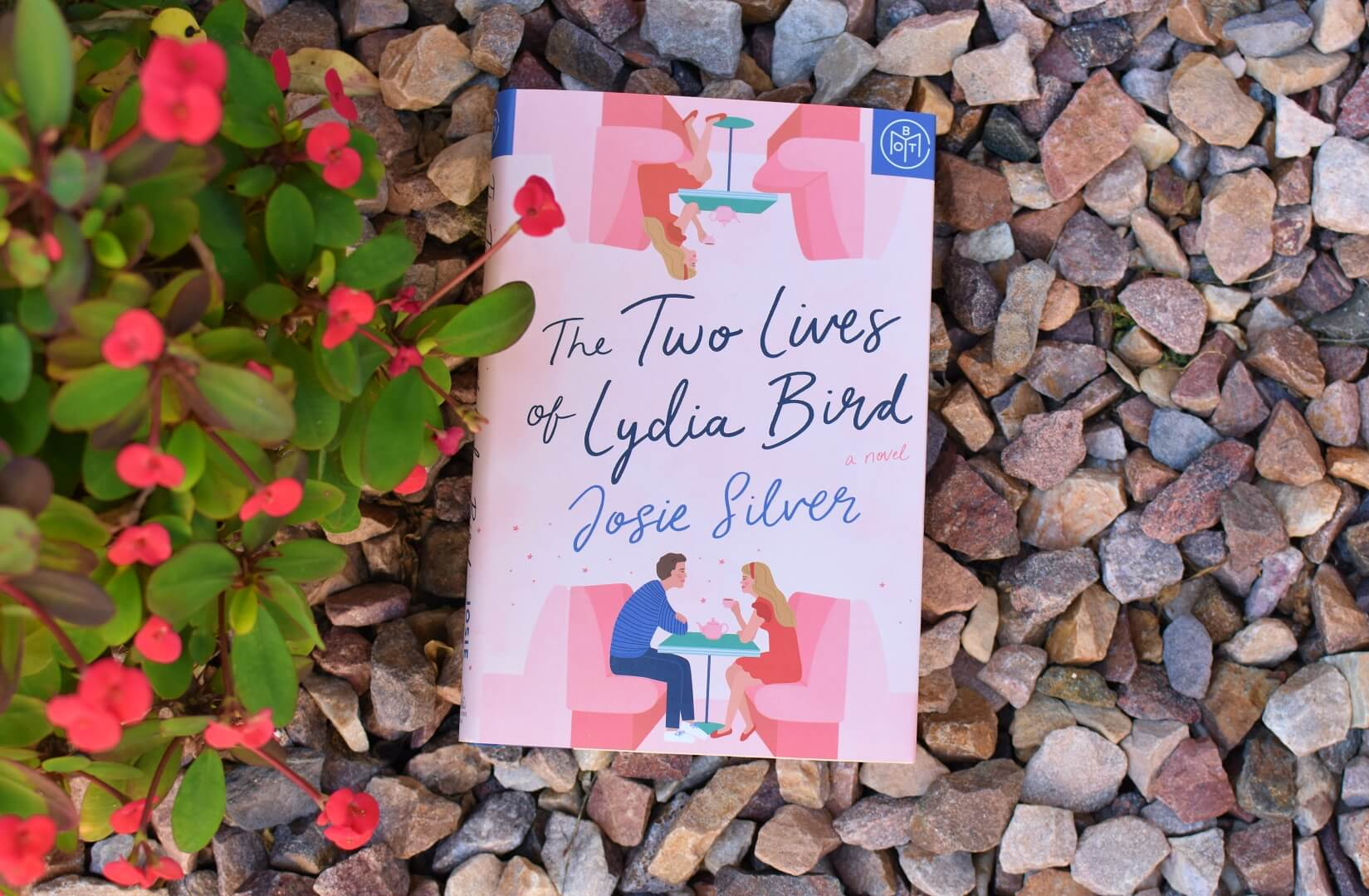 book club questions the two lives of lydia bird - book club chat