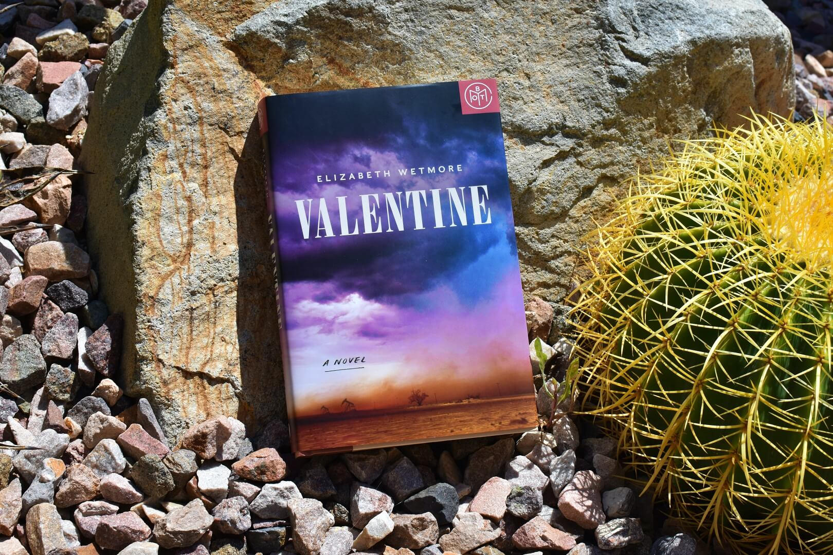 review valentine - book club chat