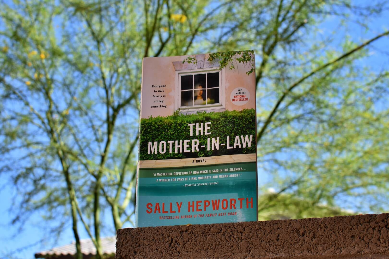 the mother-in-law book club questions - book club chat